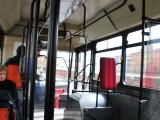 駅と斜塔はバスで。