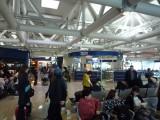 ローマ・フィウミチーノ空港。帰りは日本人ばっかり。